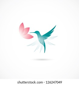 Hummingbird - vector illustration