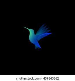 Humming-bird,colibri color transparent logo. Spa and resort emblem.