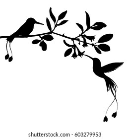 hummingbirds and flowers silhouettes, hand drawn flying birds and trees branches, isolated vector element