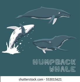 Humpback Whale Cartoon Vector Illustration