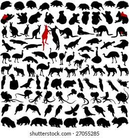 Hundred silhouettes of wild rare animals from Australia, Tanzania and New Zealand