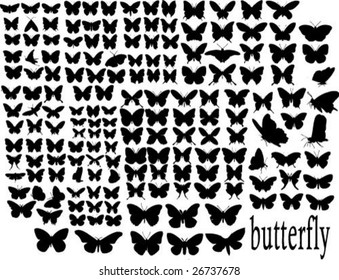 hundreds butterfly silhouettes vector