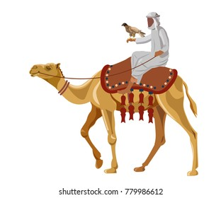 Hunter with falcon on camel. Vector illustration isolated on white background.