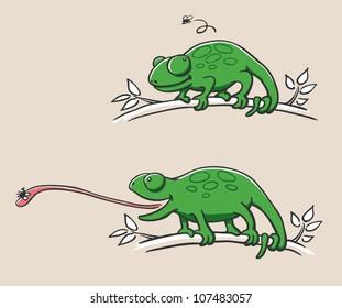 Hunting Chameleon