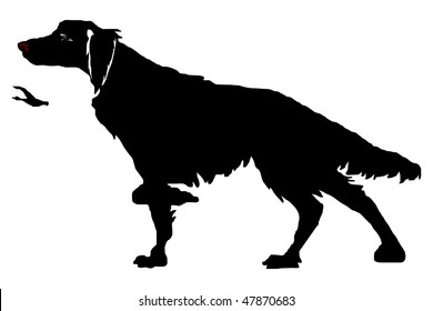 aa06061eaa632 The hunting dog in a rack, a duck, a silhouette on the white background