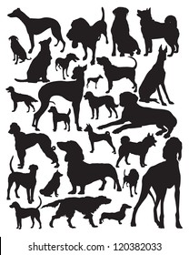 Hunting dogs silhouette