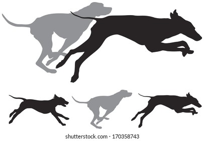 The hunting hound dogs run, foxhound vector silhouettes