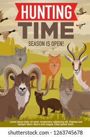 Hunting open season and hunter hunt adventure poster. Vector wild forest animals and birds, wolf or fox and ermine or mink, lynx with ducks or mountain sheep and African Safari gazelle