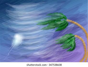 hurricane and palms