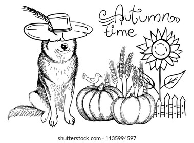 Husky dog in cowboy hat, pumpkin, sunflower, bird, wheat and lettering Autumn time. Vector illustration. Template for a card or poster.