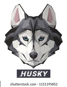 Husky Dog low poly design. Triangle vector illustration isolated on white