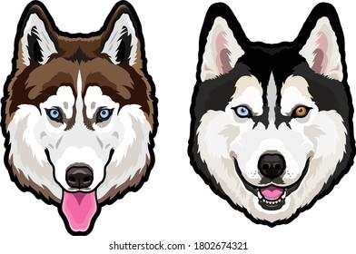 Husky dog portrait vector illustration
