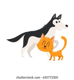 Husky dog dog and red cat, kitten characters, pets, friendship concept, cartoon vector illustration isolated on white background. Husky dog dog and red cat characters, friends