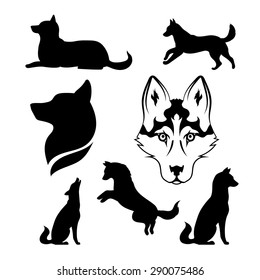 Husky icons and silhouettes. Set of silhouettes in different poses.