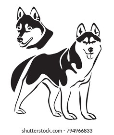 Husky isolated on white background. Laser cutting template. Stencil. Dog silhouette. Set.