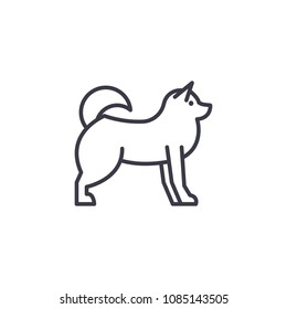 husky  vector line icon, sign, illustration on background, editable strokes