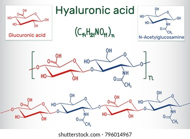 Hyaluronic acid (HA, hyaluronate, hyaluronan ) macromolecule. It is composed of repeating disaccharide units of N-acetylglucosamine and D-glucuronic acid. Structural chemical formula. Vector EPS10