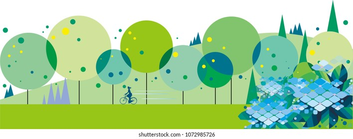 Hydrangea blooming green road