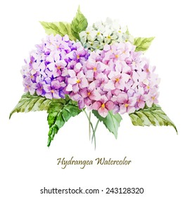 hydrangea, watercolor, flowers, greeting card, bouquet