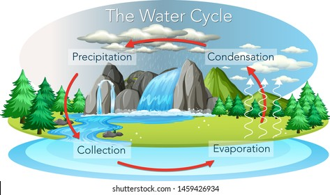 The hydrological water cycle on Earth
