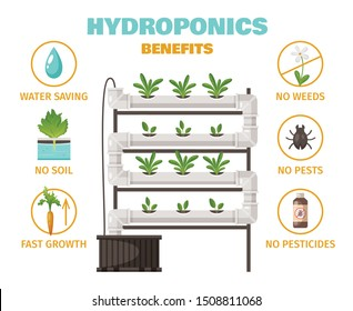Hydroponics benefits concept with water saving and fast growth symbols cartoon vector illustration