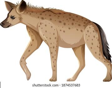 Hyena-Tier auf weißem Hintergrund, Vektorgrafik
