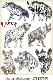 hyena vector sett