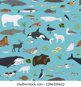 Ice sheet and polar desert biome. Terrestrial ecosystem world map. Arctic animals, birds, fish and plants seamless pattern design. Vector illustration