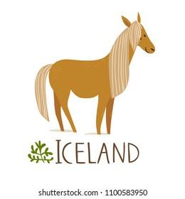 Iceland nature animals. Horse.