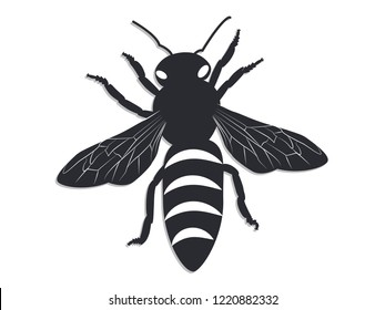 Icon - Black bee on white background - flat style - isolated - vector