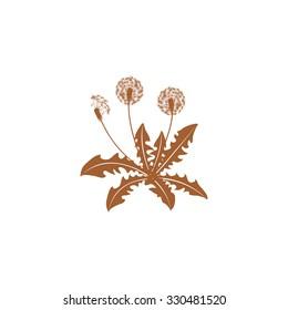 Icon dandelion.