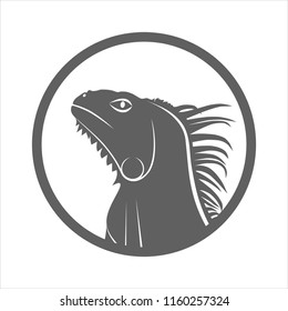 Icon iguana. Flat symbol iguana head. Isolated gray sign iguana on white background. Vector Illustration
