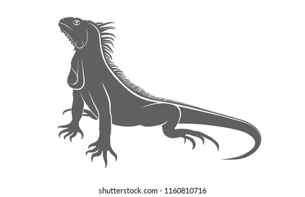 Icon iguana. Flat symbol iguana. Isolated gray sign iguana on white background. Vector Illustration