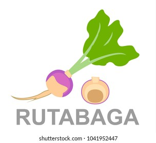 icon rutabaga whole and in section
