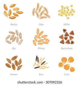 Icon set of cereal grains part 3 / Solid fill set of cereal grains