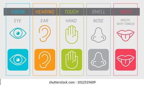 Icon set of five human senses vision (eye), smell (nose), hearing (ear), touch (hand), taste (mouth with tongue). Vector illustration