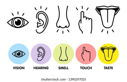 Icon set of five human senses. Vision  eye, smell nose, hearing ear, touch hand, taste mouth with tongue . Simple line icons and color circles, vector illustration.