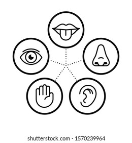 Icon set of five human senses.Vision eye, smell nose, hearing ear, touch hand, taste mouth with tongue. Isolated vector illustration. Poster, banner, web design. Medical reference. Body anatomy study.
