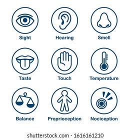 Icon set of human senses of perception. Sight, smell, hearing, touch, taste and sense of balance, temperature, body and pain. Simple, minimal line icons vector illustration.