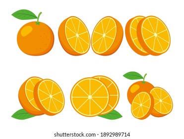icon set of various fruit - orange isolated on White background. Vector illustration