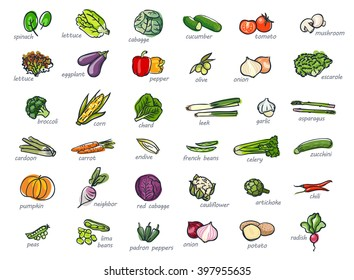 Icon set of vegetables, hand drawn style