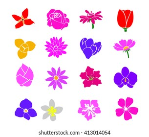 icon vectors design from flowers pic my photo shoot in the garden and sketch from any flower from nature.