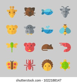 Icons about Animals with hedgehog, rat, dragonfly, cat, prawn and giraffe