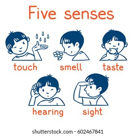 Icons of five senses - touch, taste, hearing, sight, smell. Children vector illustration of boy in red t-shirt