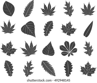 Icons of leaves.Vector illustration