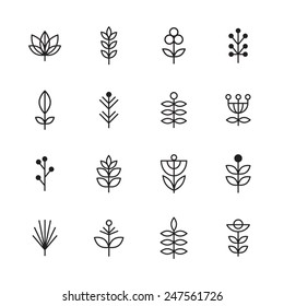 Icons plant