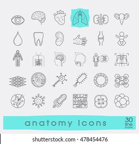 Icons presenting various organs and parts of the human body.
