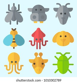 Icons set about Animals with hippopatamus, dog, cockroach, wasp, squid and goat