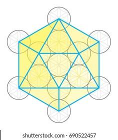 Icosahedron icon vector