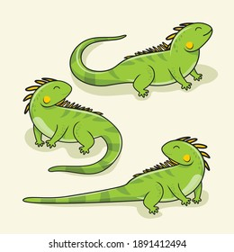 iguana cartoon illustrations set collections
